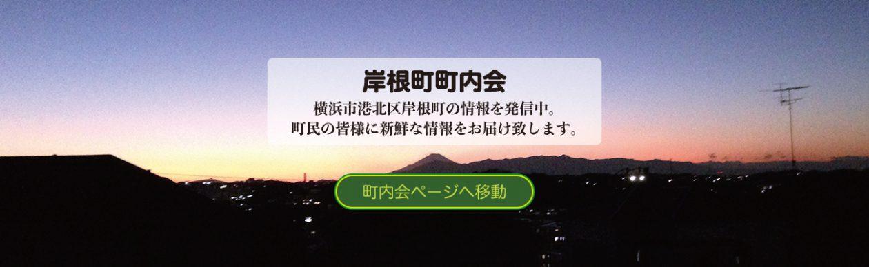 岸根町から見た富士山